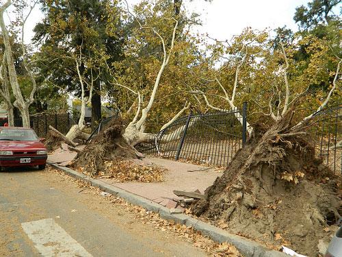 Los temporales afectan cada vez con más frecuencia a Buenos Aires y las zonas aledañas. Crédito: Juan Moseinco/IPS