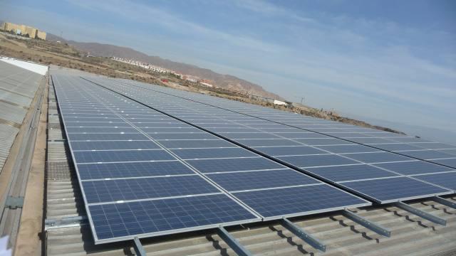 Central fotovoltaica en Almería, España. Crédito: Miguel Carra/Asociación Nacional de Productores e Inversores de Energías Renovables.