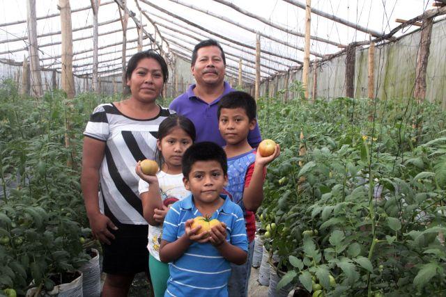 El ingeniero agrónomo Francisco Ramírez, socio de la Asociación Cooperativa de Producción Agropecuaria Hortaliceros de Cuscatlán, y su familia en uno de los invernaderos donde cosechan tomates. Crédito: Tomás Andréu/IPS