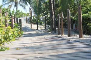 Luego del huracán Mitch, el pueblo de Santa Rosa de Aguán en Honduras agradece el proyecto de recuperación de dunas que buscó generar condiciones que permitieran a la comunidad adaptarse a los riesgos del cambio climático y proteger el ecosistema.