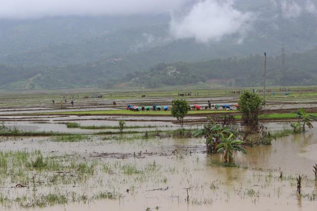 La agricultura de Nepal tiene desafíos particulares en la temporada de monzones. Crédito: Mallika Aryal/IPS