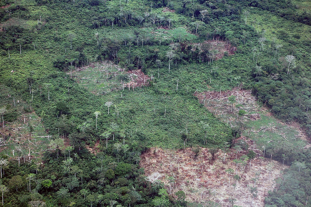República Democrática del Congo  es el segundo país con mayor superficie de selva tropical del mundo. La agricultura basada en la tala y quema y el carbón vegetal son las principales fuentes de las emisiones de gases de efecto invernadero en el país. Crédito: Taylor Toeka Kakala/IPS