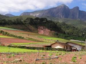 Finca familiar en el estado brasileño de Río de Janeiro, con un sistema de siembra que se adapta a las manifestaciones locales del cambio climático. Crédito: Fabiola Ortiz/IPS.