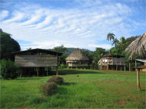Un grupo de viviendas del pueblo emberá en un claro de los bosques donde viven. La Comarca Emberá-Wounaan abarca casi 4.400 kilómetros cuadrados y los indígenas quieren manejar su riqueza forestal para sacar a sus familias de la pobreza en que sobreviven sus familias. Crédito: Gobierno de Panamá