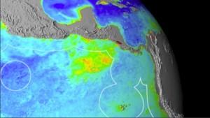 La concentración de clorofila en el denominado Pacífico Tropical Oriental (en rojo), frente a la costa noroccidental de Costa Rica, evidencia una gran productividad, que permite la formación de una cadena trófica. Crédito: Kip Evans/Fundación MarViva