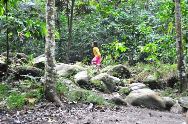 Los pueblos indígenas que viven en bosques tradicionales como este en la isla indonesia de Lombok no son consultados cuando esas tierras se entregan a entidades comerciales. Crédito: Amantha Perera/IPS
