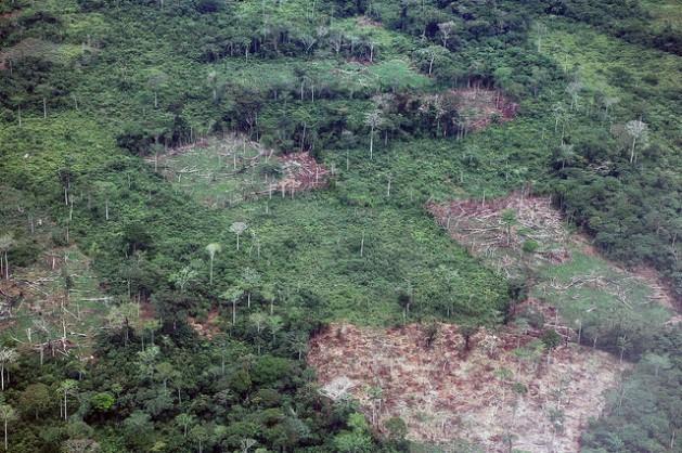 El territorio compuesto por los bosques tropicales en República Democrática del Congo es el segundo mayor del mundo. Aquí, la agricultura de tala y quema y el carbón son las principales causas de las emisiones de gases con efecto invernadero. Crédito: Taylor Toeka Kakala/IPS