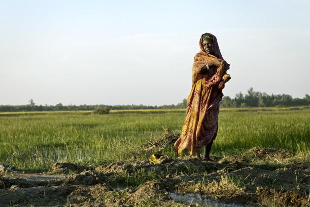 Las mujeres son la columna vertebral de la producción agrícola y desempeñan una función fundamental en la mejora de la nutrición mediante la preparación de los alimentos y la educación de los niños y niñas. Crédito: Foto de la ONU/Marco Dormino