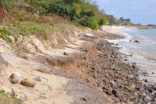 Erosión costera en Antigua. Aun las que no tienen construcciones sufren un proceso de erosión, dijo la directora de ambiente Diann Black-Layne. Crédito: Desmond Brown/IPS.
