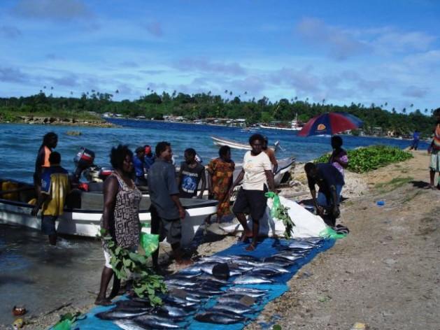 Escena en el norte de Bougainville. La búsqueda de los desaparecidos tras la guerra civil es considerada una prioridad para la reconciliación y el desarrollo de la zona. Crédito: Catherine Wilson/IPS