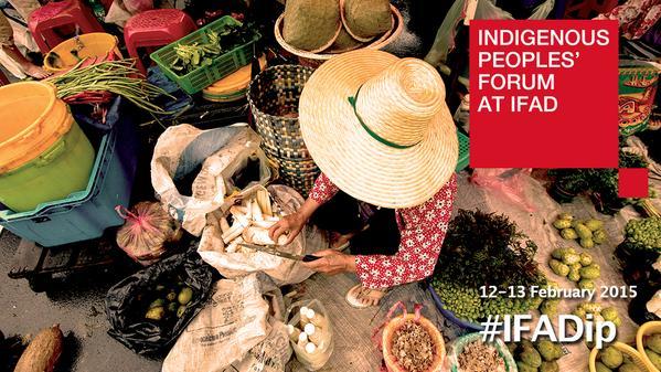 La seguridad alimentaria y una dieta balanceada para todos debe combinarse con el conocimiento del sistema alimentario y modo de vida de los pueblos indígenas como forma de contribuir al desarrollo sostenible. Crédito: FIDA.