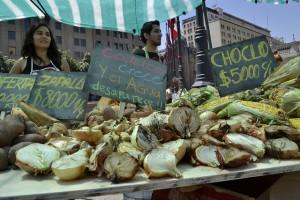 Una muestra de cómo sería supuestamente la cosecha de frutas y verduras sin el agua de los nevados, en la Feria sin Glaciares organizada por Greenpeace, en la Plaza de la Constitución de Santiago de Chile, el 23 de enero de 2015. Crédito: Marianela Jarroud/IPS