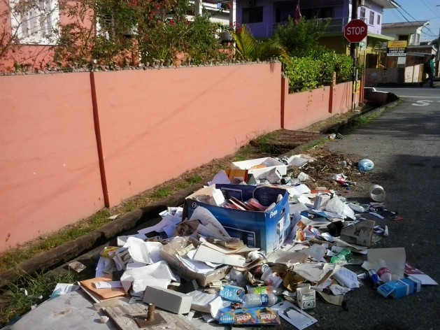 La epidemia de chikungunya en el Caribe se atribuyó, en parte, al vertido indiscriminado de basura como en esta calle en Curepe, en Trinidad. Esto genera las condiciones propicias para la reproducción de mosquitos, el vector de la enfermedad. Crédito: Jewel Fraser/IPS