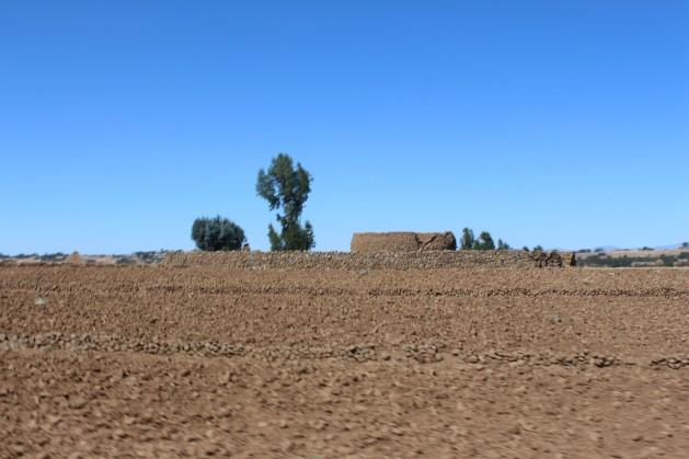 Un obstáculo en el camino para acabar con el hambre en África es el cambio climático mundial, que afecta a las tierras de cultivo y destruye las cosechas de los agricultores en todo el continente. Crédito: Tinso Mungwe