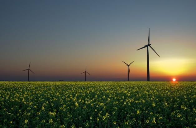 Las inversiones mundiales en energías renovables, impulsadas por la solar y la éolica, dieron un salto en 2014. Crédito: Jürgen de Sandesneben, Alemania/ CC BY 2.0