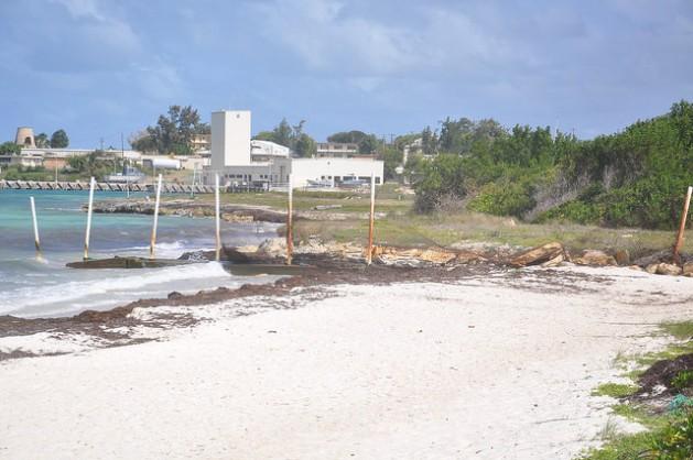 Una parte de la playa Jabberwock, situada en la costa noreste de Antigua, erosionada por el mar. Crédito: Desmond Brown / IPS