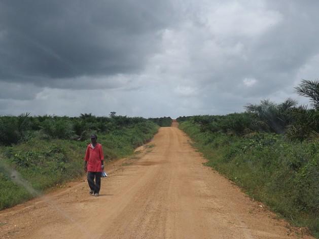 El territorio de Boegbor, un pueblo en el distrito del condado de Grand Bassa, en Liberia, pasó a la empresa Equatorial Palm Oil por medio de una concesión de 50 años. Crédito: Wade C.L. Williams/IPS