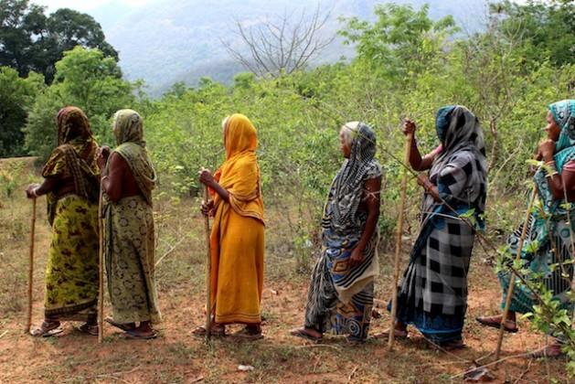 Mujeres de la aldea tribal de Gunduribadi, en el estado oriental de Odisha, en India, patrullan la selva con palos para evitar la tala ilegal. Crédito: Manipadma Jena/IPS