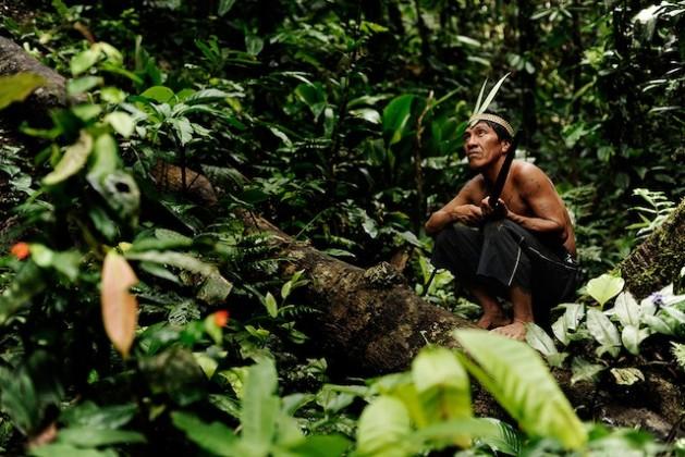 Este cazador pertenece a la comunidad waorani, pueblo amazónico que vive en el este de Ecuador. Crédito: Cortesía, Nicolas Villaume, Land is Life