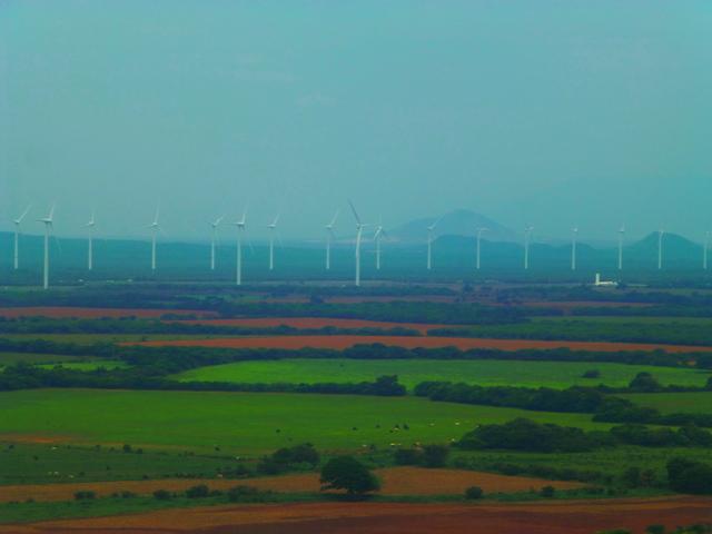 Un parque eólico en el sureño estado de Oaxaca, en México, donde la instalación de los campos aerogeneradores en su territorio han puesto en pie de lucha a comunidades y pueblos indígenas. Crédito; Cortesía del Servicio Internacional para la Paz