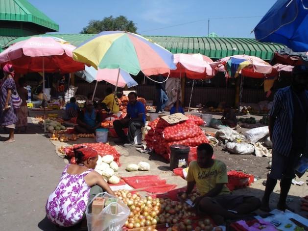Organizaciones de la sociedad civil de la región del Pacífico sostienen que es necesario cuidar a la industria local antes de lanzarse en más acuerdos de libre comercio. Crédito: Catherine Wilson/IPS