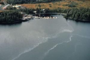 Exxon fue responsable en 1989 del derrame de petróleo del tanquero Exxon Valdez en Alaska, lo que constituyó su mayor tragedia ambiental. En la imagen, la afectada Bahía de Chenega. Crédito: ARLIS Reference.