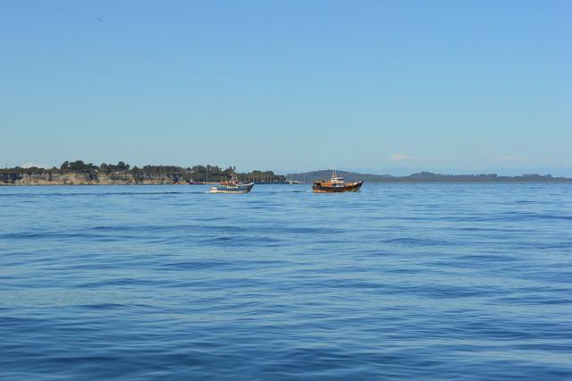 Lanchones pesqueros atraviesan el Canal del Chacao, frente a las costas de la Isla Grande de Chiloé, en la Región de Los Lagos, en el sur de Chile. Crédito: Claudio Riquelme/IPS