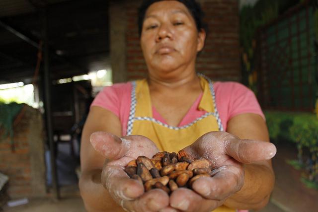 Las manos de Idalia Ramón cuidan las almendras de cacao producidas en el pueblo de Caluco, en el occidente de El Salvador. Las mujeres protagonizan la transformación del cacao en chocolate, en un proceso ecológico que adquiere empuje en este país centroamericano gracias al proyecto nacional Alianza Cacao, destinado a rescatar su olvidado cultivo y mejorar el futuro de 10.000 familias campesinas. Crédito: Edgardo Ayala/IPS