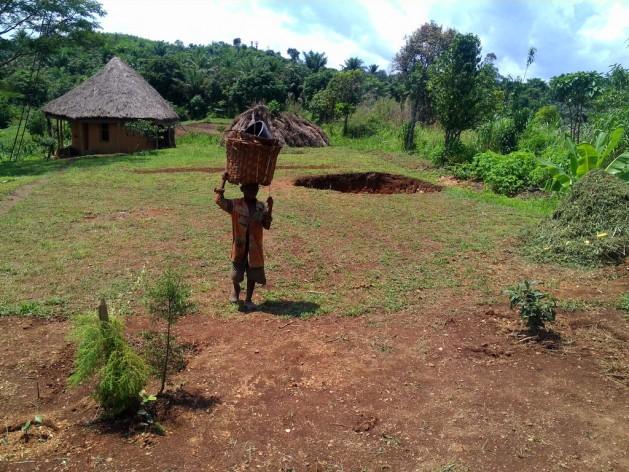 Ecoaldea de Permacultura Ndanifor, en Bafut, en la región Noroeste de Camerún, la primera y única que promueve el principio de que la clave de la seguridad alimentaria radica en métodos agrícolas orgánicos y sostenibles. Crédito: Mbom Sixtus/IPS