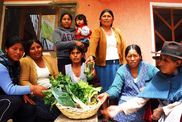 Mujeres de la Asociación de Productores Urbanos de Sucre, de barrios de la periferia de la capital oficial de Bolivia, con una canasta de hortalizas ecológicas cosechadas en sus huertos tipo invernadero, con los que han mejorado la alimentación y la economía de sus familias. Crédito: Franz Chávez/IPS