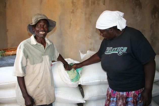Los agricultores Enock Gwangwawa y Alice Mhonda, en Zimbabwe, almacenan su maíz en bolsas herméticas para protegerlo del gorgojo y los hongos. Crédito: Busani Bafana / IPS