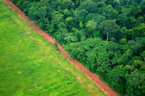 La deforestación es uno de las principales fuentes de emisión de gases de efecto invernadero del Sur Global como en esta área de Rio Branco, en el norteño estado de Acre, en Brasil. Los INDC prometen revertir la situación para 2030. Crédito: Kate Evans / Centro para la Investigación Forestal Internacional