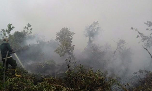 Incendio en Garung, una aldea en Kalimantan Central, en Indonesia. Crédito: Ministerio de Medio Ambiente y Bosques de Indonesia.