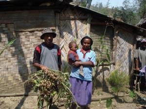 Habitantes de Avaninofi, en Papúa Nueva Guinea, exhiben plantas de tomate que perecieron durante la grave sequía de este año. Crédito: Catherine Wilson / IPS