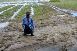 Los fenómenos meteorológicos extremos pueden ser devastadores para los pequeños agricultores de Sri Lanka que sobreviven de una cosecha a la otra. Crédito: Amantha Perera / IPS.