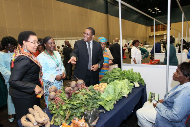 Estherine Fotabong (al medio), de la Nueva Asociación para el Desarrollo Económico de África (Nepad) durante la Conferencia de Durban sobre Mujeres en los Agronegocios. Crédito: Ngala Killian Chimtom/IPS