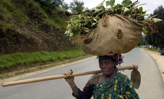 Las mujeres representan 80 por ciento de la mano de obra agrícola en Uganda y, sin embargo, no se incluyen cuestiones de género en las políticas sobre cambio climático y agricultura. Crédito: Wambi Michael/IPS