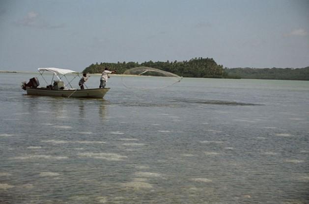 Pescadores en aguas de Palaos. Crédito: Christopher Pala / IPS