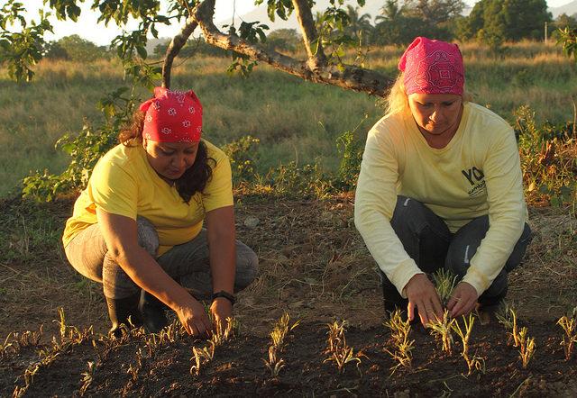 Jannete Salvador y Doris Zabala trabajan en la parcela de cebollines en el Centro Penitenciario para Mujeres Granja Izalco, en el occidental departamento de Sonsonate en El Salvador. El gobierno desarrolla el trabajo en granjas para atender el problema del ocio en las cárceles. Crédito: Edgardo Ayala/IPS.