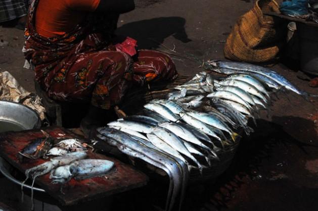 Las pescadoras se encargan de actividades subsidiarias como la venta y el procesamiento, pero carecen de un suministro adecuado de agua, saneamiento y les falta higiene menstrual. Crédito: Malini Shankar/IPS.