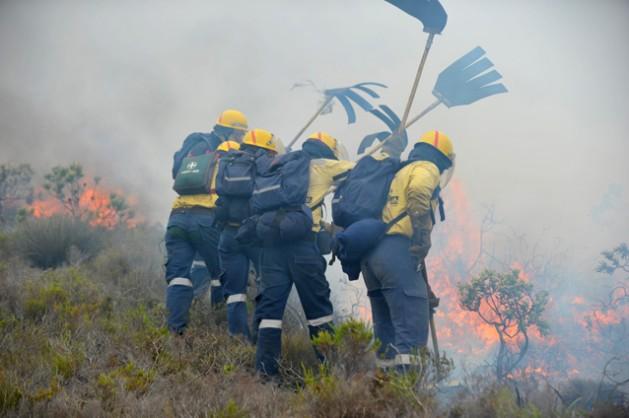 Bomberos de WoF combatiendo un incendio en Muizenberg, cerca de Ciudad del Cabo, Sudáfrica. Crédito: IPS-WoF1