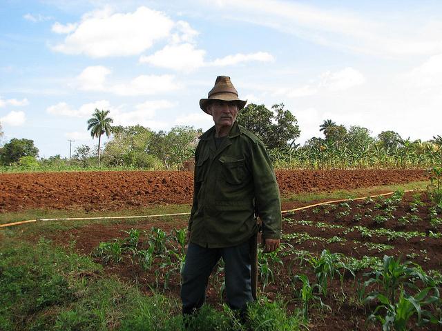 Juan Reyes en su finca de Cotorro, en Cuba. Ese país caribeño intenta aprovechar sus experiencias en la llamada agricultura urbana, para afrontar el reto de la seguridad alimentaria. Crédito: Patricia Grogg/IPS.