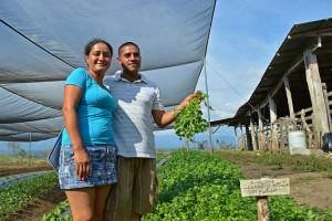 Xinia Solano y Luis Diego Murillo son una de las familias que trabajan con el programa de casas sombra en Los Reyes, en el municipio de Coto Brus, en el sureste de Costa Rica. El modelo es promovido por la FAO, junto con instituciones estatales del país. Crédito: Diego Arguedas Ortiz/IPS