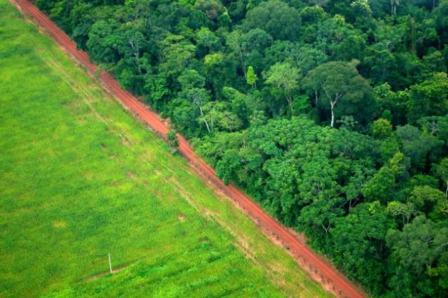 Países latinoamericanos ratifican su participación en el Acuerdo de París, comprometiéndose a disminuir la emisión de gases de efecto invernadero.