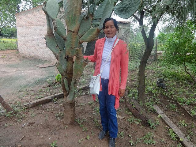 Marta Maldonado, secretaria de la asociación Siempre Unidos Minifundios de Corzuela, junto a una planta de tuna, un cactus abundante en ese municipio de la provincia de Chaco, en Argentina, cuyo aprovechamiento ha cambiado la vida de un grupo de familias. Crédito: Fabiana Frayssinet/IPS