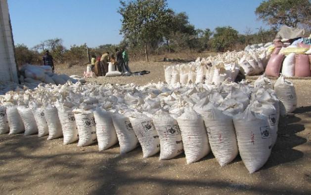Sacos de maíz en el Depósito de la Agencia de Reserva de Alimentos en Kasiya, en el distrito de Pemba en el sur de Zambia. Crédito: Friday Phiri/IPS.