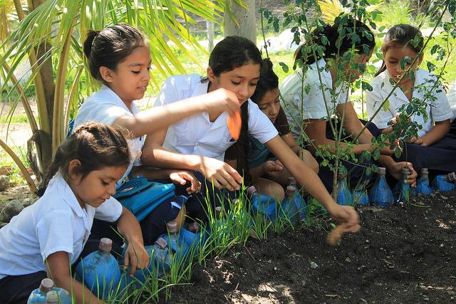Un grupo de alumnas de la escuela República de Venezuela, en la aldea lenca de Coloaca, en el occidente de Honduras, en el huerto pedagógico donde cultivan y aprenden a la vez sobre la importancia de la alimentación nutritiva y saludable. Crédito: Thelma Mejía/IPS