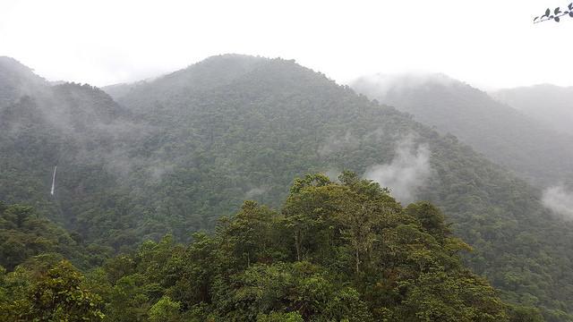 El Parque Nacional Tapantí, al este de San José de Costa Rica, cubre más de 50.000 hectáreas de bosque y sirve como punto de recarga acuífera. Crédito: Diego Arguedas Ortiz/IPS