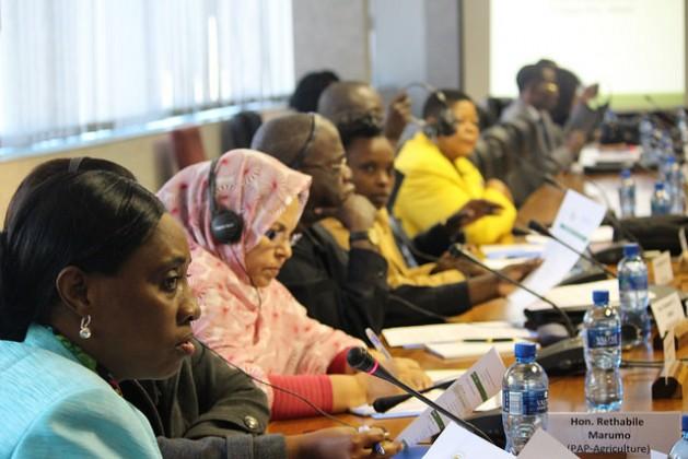 Representantes del Parlamento Panafricano participan en el taller especial que organizó esa institución junto con la FAO para impulsar la seguridad alimentaria y nutricional. Crédito: Desmond Latham/IPS.