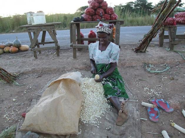 Con más apoyo de extensión, las agricultoras pueden aumentar su productividad y mejorar la seguridad alimentaria en África. Crédito: Busani Bafana/IPS.